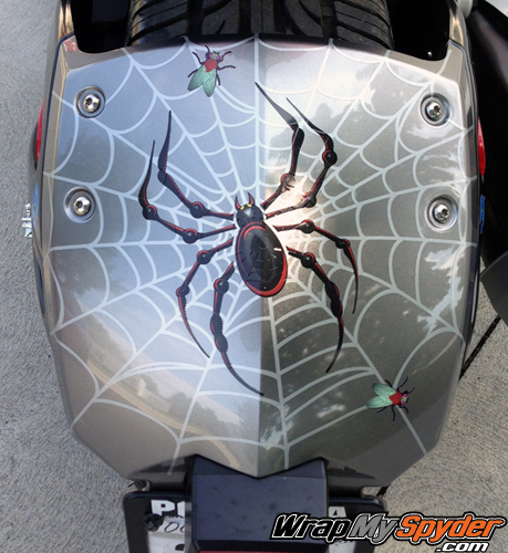 Spider, web, fly Rear Fender RS