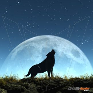 Wolf Moon Frunk wrap shown with outline