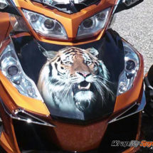 Yellow Tiger Frunk wrap for all Spyder models