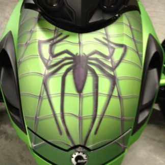 spidy-on-web-green-rs-