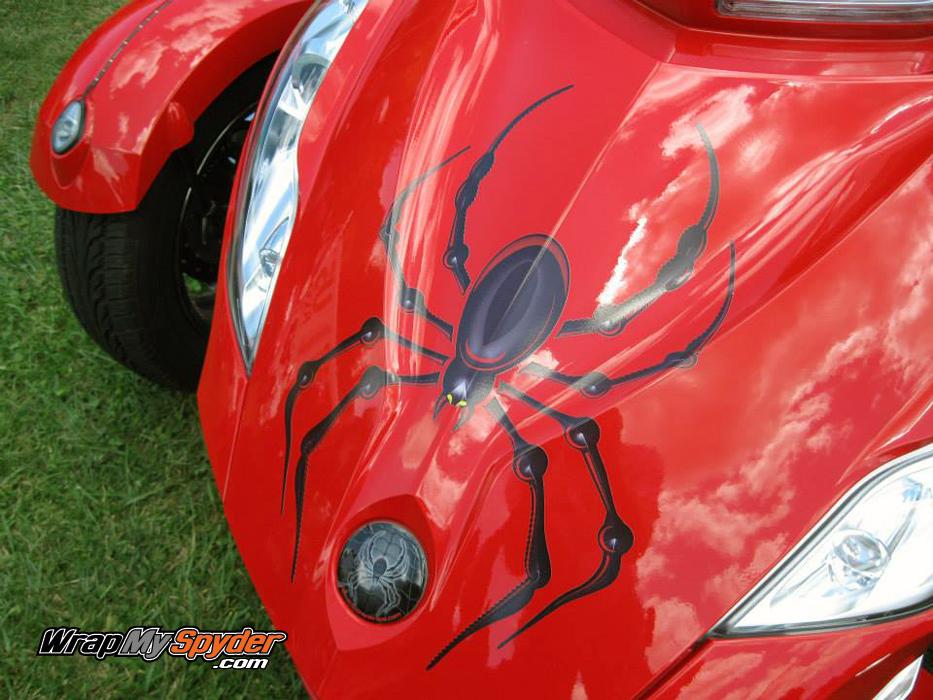 Bellerdine spider decal Black / Red