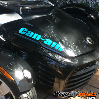 can-am-text Aqua color