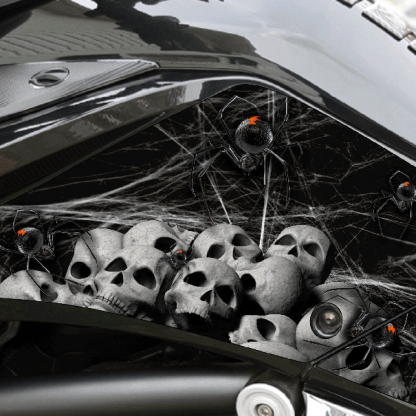 Black Widow Party Knee Panel kit for BRP Can-am Spyder F3