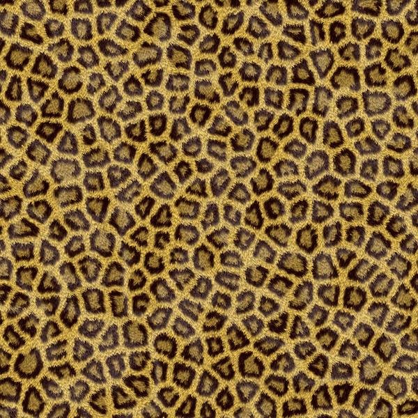 AMS-203-LPD leopard