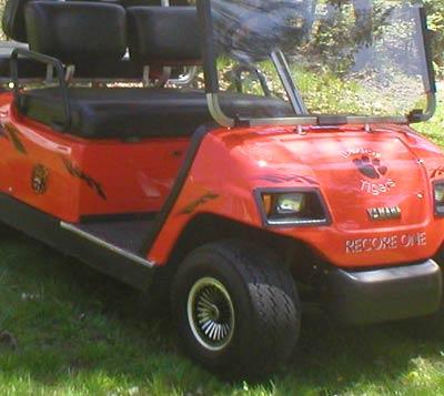 Singer golf cart decal kit